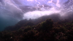 Ocean scenery wild conditions, waves breaking in rocks overhead, cormorant Stock Footage
