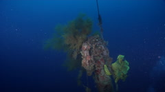 Ocean scenery main mast, on wreckage, HD, UP26888 Stock Footage