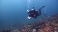 Scientific diver swimming on rocky reef in Australia, HD, UP26632 Stock Footage