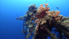 Ocean scenery foremast with spotlight and coral growth, on wreckage, HD, UP26988 Stock Footage