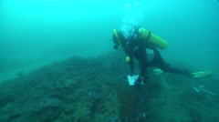 Scientific diver swimming on coffee rock reef in Australia, HD, UP26476 Stock Footage