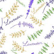 Lavender Seamless pattern Stock Illustration