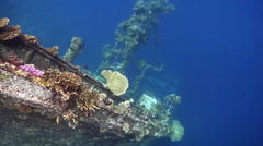 Ocean scenery looking straight down on vertical wreck showing coral growth, on Stock Footage