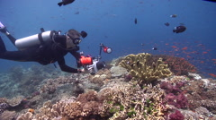 Expert diver with perfect buoyancy taking images on shallow coral reef with Stock Footage