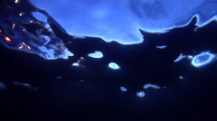 Underwater shot of ocean surface from below with some lights on dive boat Stock Footage