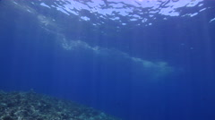 Ocean scenery coral spawn slick on the surface, on shallow coral reef, HD, - stock footage