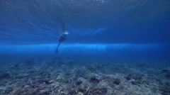 Male model scuba diver swimming on shallow coral reef in Solomon Islands, HD, Stock Footage