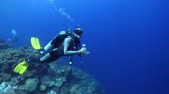 Female model scuba diver swimming on wall in Solomon Islands, HD, UP27085 Stock Footage