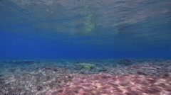 Ocean scenery wave breaking on reef, on very shallow reef and surface, HD, Stock Footage