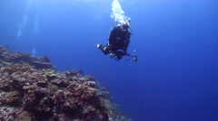 Housed SLR photographer swimming on wall in Solomon Islands, HD, UP27086 Stock Footage