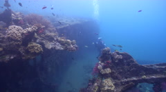 Photographer and model taking images on wreckage in Solomon Islands, HD, UP18421 Stock Footage