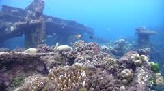 Ocean scenery boneghi, slight surge, on wreckage, HD, UP18424 - stock footage
