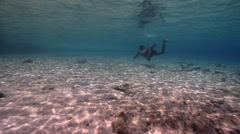 Local spearfisherman looking for fish, underwater, HD, UP27603 Stock Footage