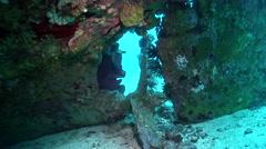 Male model scuba diver on wreckage in Solomon Islands, HD, UP18447 Stock Footage