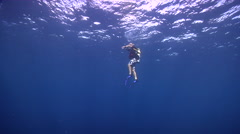 Tropical male model scuba diver looking around in bluewater, HD, UP18615 Stock Footage
