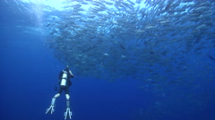 Photographer with strobe flash taking images in bluewater with Bigeye trevally Stock Footage