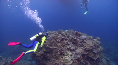 Group of scuba divers swimming on shallow coral reef in Solomon Islands, HD, Stock Footage