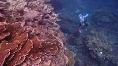 Ocean scenery tracks diver, then bubbles up, on shallow coral reef, HD, UP18909 - stock footage