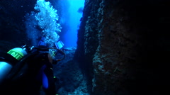 Group of scuba divers looking around in cavern in Solomon Islands, HD, UP18995 - stock footage