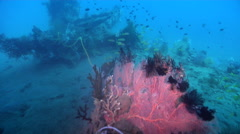 Ocean scenery WWII, World War 2 Japanese freighter, on wreckage, HD, UP28036 Stock Footage