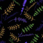 Lavender Seamless pattern - stock illustration