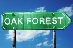 oak forest road sign , worn and damaged look - stock illustration