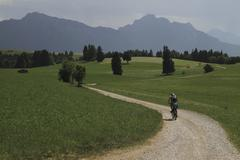 Rear view of person riding bicycle on dirt road amidst grassy field against Stock Photos