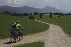 Rear view of man riding bicycle on road amidst grassy field against sky Stock Photos