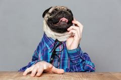 Pensive pug dog with man hands sitting and thinking Kuvituskuvat