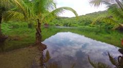 Lake on Arambol beach in Goa, India Stock Footage