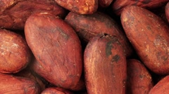 CACAO BEANS IN CLOSE UP MACRO TRACKING SHOT OVERHEAD - stock footage