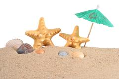 Starfishs and seashells in sand on a white - stock photo