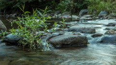 Day to night Time lapse on the shore of a crystal clear river. - stock footage