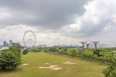 Ferris wheel and Singapore gardens at riverside - stock photo