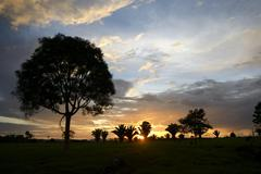 Sunset over a cleared area or pasture Amazon rainforest between Itaituba and Stock Photos