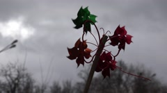 Children's toy pinwheel in the wind against a background of sky Stock Footage