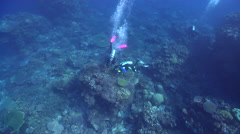 Group of scuba divers swimming on semi-protected coral slope in Solomon Islands, - stock footage