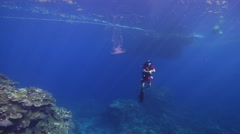Male model scuba diver swimming on coral reef with Unidentified jellyfish in Stock Footage