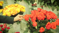 Closeup of female hands touching a bouquet of flowers in a greenhouse Stock Footage