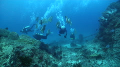 Group of scuba divers swimming on deep coral reef with Blunthead batfish in Fiji Stock Footage