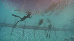 Freediving course, swimming pool, underwater, HD, UP29115 Stock Footage