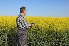 Farmer or agronomist in blossoming rapeseed field - stock photo