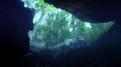 Ocean scenery rainforest overhanging cavern, shot tilts down to show dark hole, Stock Footage