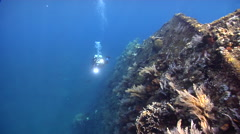 Ocean scenery diver Ralph shooting a swimover along the hull, on wreckage, HD, Stock Footage