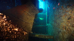 Technical or tech diver swimming in interior of shipwreck in Australia, HD, Stock Footage