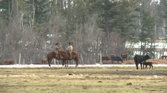 Agriculture, cowboys on the ranch late winter, low sun Stock Footage