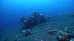 Ocean scenery lots of cardinalfish schooling around man-made artificial reef Stock Footage