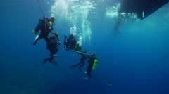 Chaotic hoard of scuba divers making a safety stop on water surface, HD, UP19978 Stock Footage