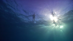 Ocean scenery swimmers and snorkellers on the surface, on water surface, HD, Stock Footage