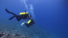 Buddy team of scuba divers swimming in bluewater in Australia, HD, UP20077 Stock Footage